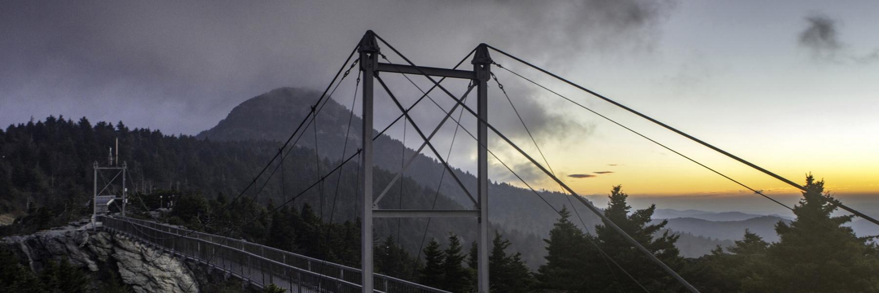 Image, Hanging Bridge