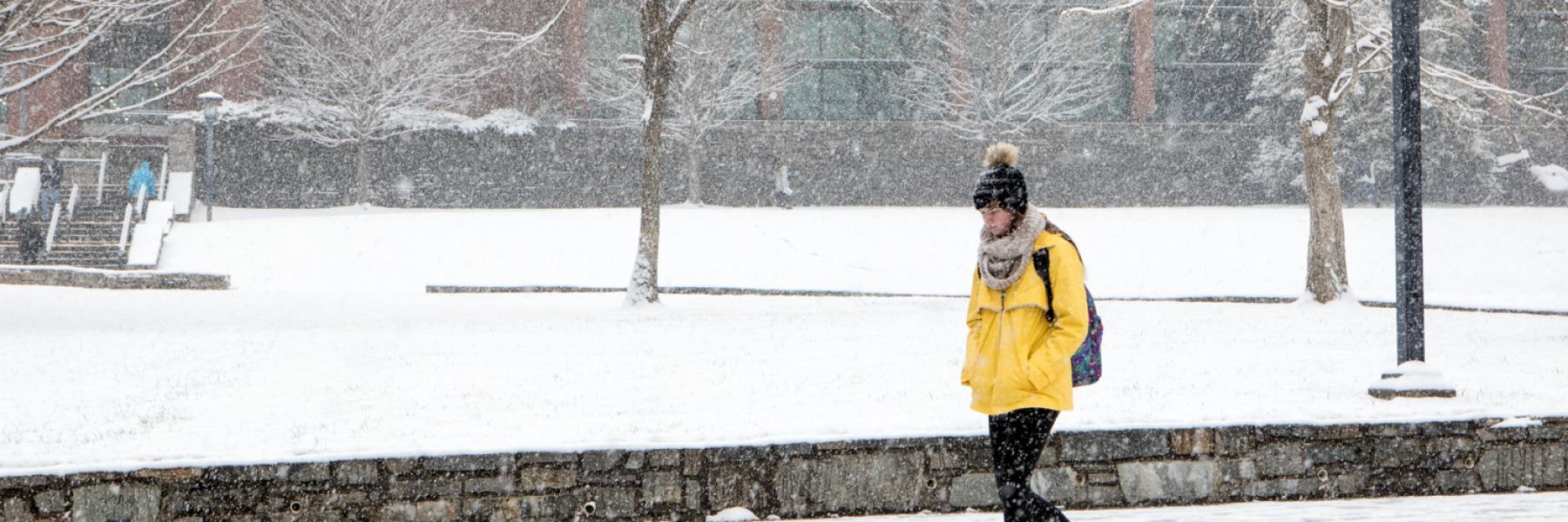 Image, Snow, Walking