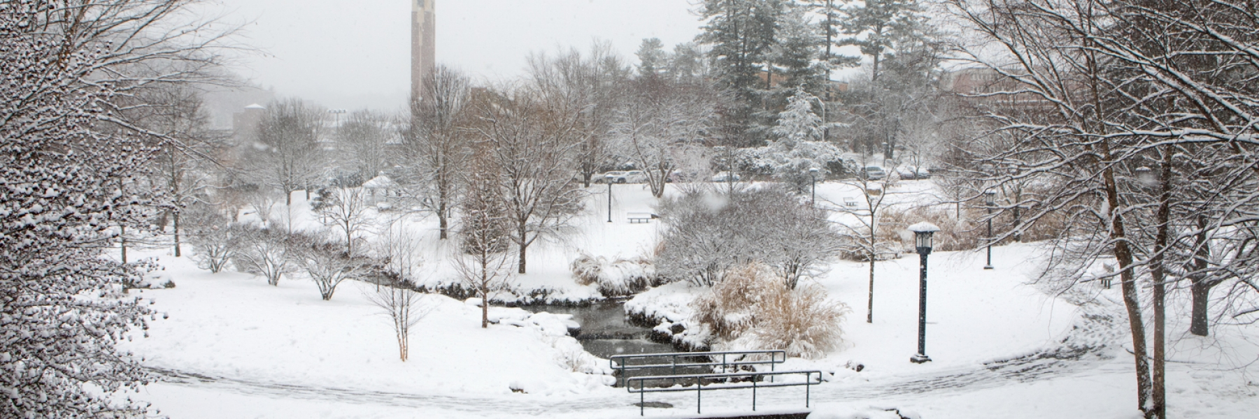 Image, Snow, Stream
