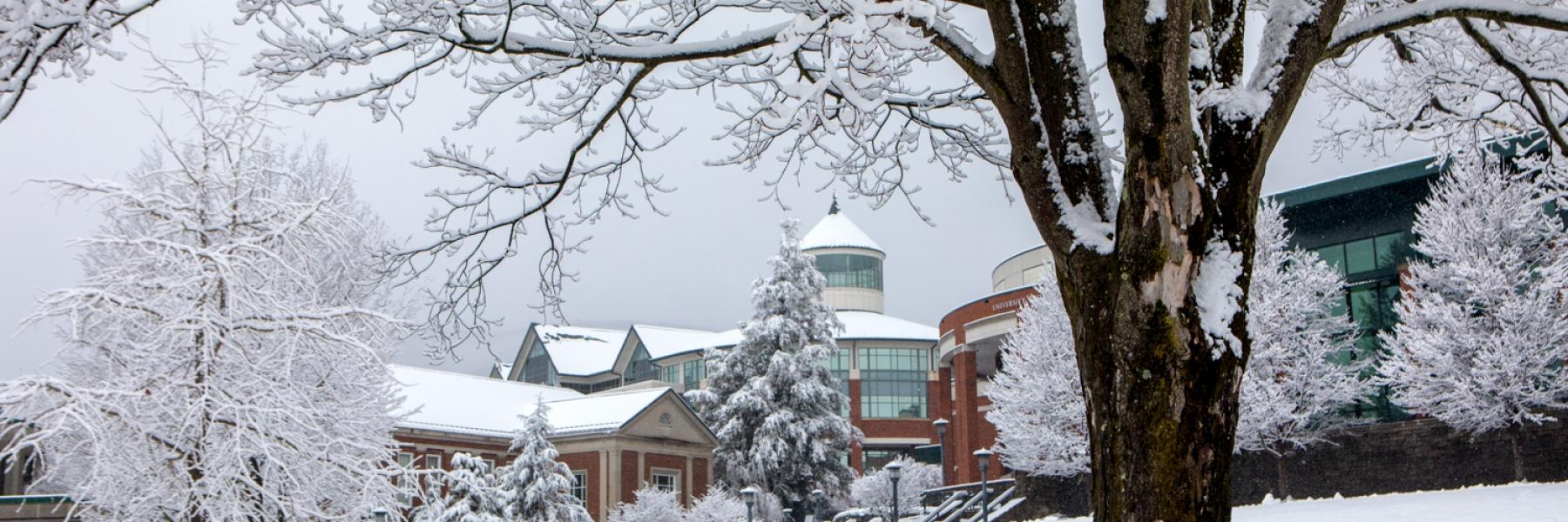Image: Snow, Campus